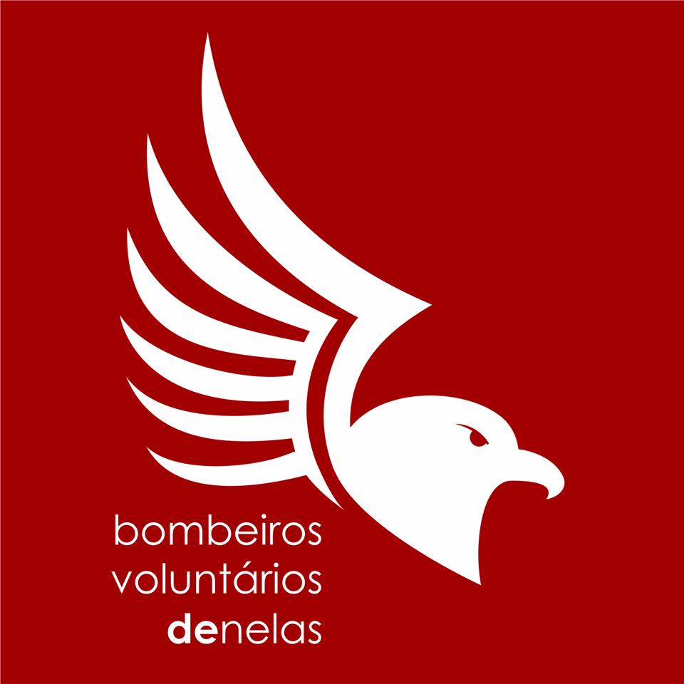 BOMBEIROS VOUNTÁRIOS DE NELAS